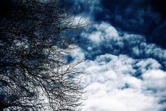 На тёмной стороне небес